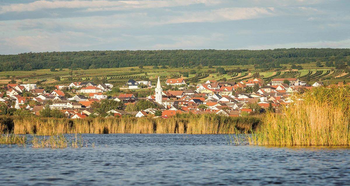 Kontakt Landessparte Transport und Verkehr Burgenland