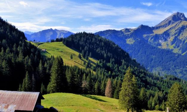 VITALPIN — Neue, branchenübergreifende Kraft für die Alpen