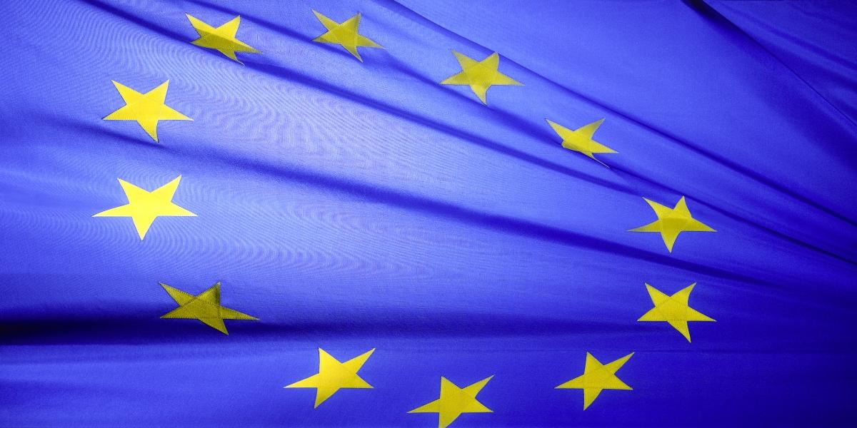 EU verlängert abgelaufene Führerscheine, Pickerl, Lizenzen