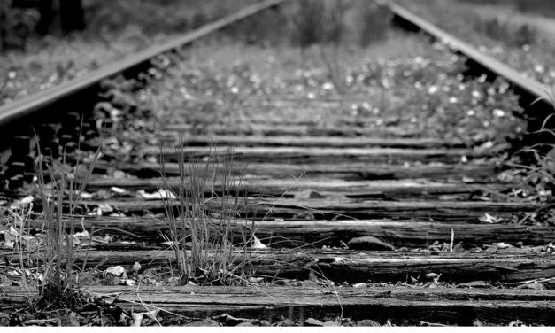 Heimische Regionalbahnen sollen neu belebt werden