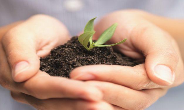 Klimaschutz-Beschaffungen einreichen bis 21. Sept 2020